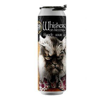 D9 Whiskers on Kittens 24x355ml can